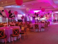Mitzvah centerpiece feather night club