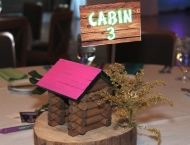 Mitzvah camp centerpiece pink green mini cabin