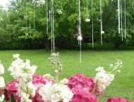 Back yard wedding decoration