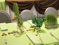Bar Mitzvah centerpieces science chemistry bio hazard