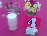 Outdoor Mitzvah center piece pink