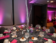 centerpiece Mitzvah zebra pink table names Cleveland hobby hobbies